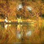 Botswana Motswiri Photo15