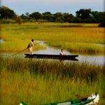 Botswana Motswiri Photo2