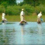 Botswana Motswiri Photo23