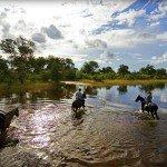 Botswana Motswiri Photo9