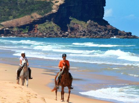 Bush & Beach Trail | Horse Riding Holidays Australia