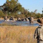 Botswana Motswiri Photo25