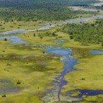 Botswana Motswiri Photo33