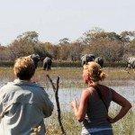Botswana Motswiri Photo56