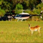 Botswana Okavango Photo10