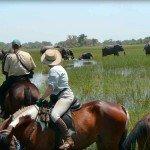Botswana Okavango Photo24