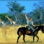 Botswana Okavango Photo26