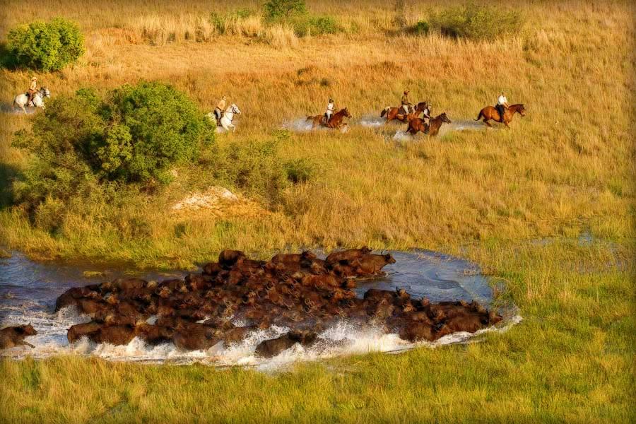 Botswana Okavango Photo6