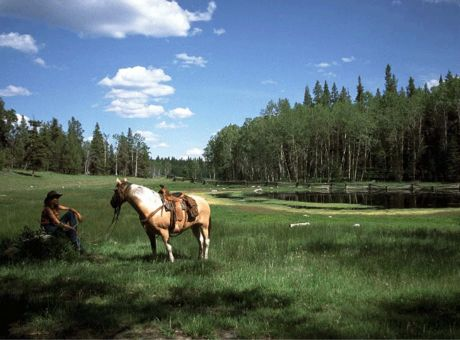 Siwash Lake Ranch | Horse Riding Holidays Canada