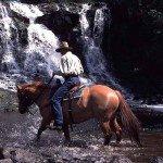 Canada Siwash Lake Ranch Photo17