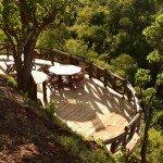 Kenya Lolldaiga Ranch Photo16