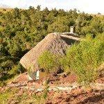 Kenya Lolldaiga Ranch Photo17