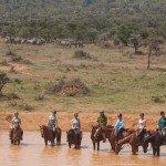 Kenya Lolldaiga Ranch Photo24