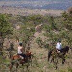 Kenya Lolldaiga Ranch Photo27