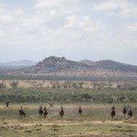 Kenya Lolldaiga Ranch Photo28