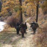 Mongolia Altai Mountains Photo1