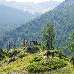 Mongolia Altai Mountains Photo5