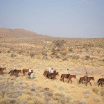 Namibia The Desert Ride Photo13