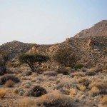 Namibia The Desert Ride Photo14