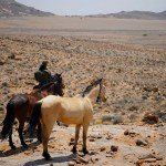 Namibia The Desert Ride Photo18
