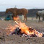 Namibia The Desert Ride Photo2