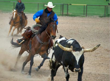 Cattle Ranch | Horse Riding Holidays USA