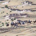 USA Colorado Cattle Ranch Photo2