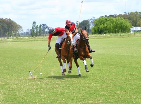 Buenos Aires Polo Club | Horse Riding Holidays Argentina