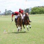 Argentina Buenos Aires Polo Club Photo2