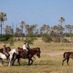 Botswana Kalahari Camp Photo19