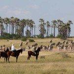 Botswana Kalahari Camp Photo20