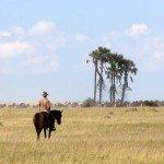 Botswana Kalahari Camp Photo21
