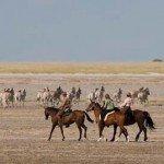 Botswana Kalahari Camp Photo23