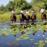 Botswana Kalahari Camp Photo40