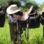 Botswana Kalahari Camp Photo41