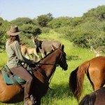 Botswana Kalahari Camp Photo45