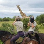 Botswana Limpopo Safaris Photo20