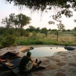 Botswana Limpopo Safaris Photo21