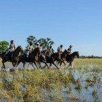 Botswana Macatoo Safari Photo14