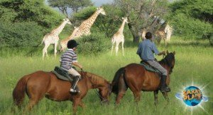 Destination - Botswana