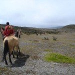 Ecuador Horse Riding Trails Photo15