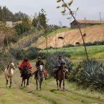 Ecuador Horse Riding Trails Photo20