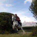 Ecuador Horse Riding Trails Photo39