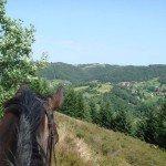 France Aveyron Farmhouse Photo24