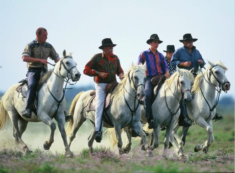 La Camargue | Horse Riding Holidays France