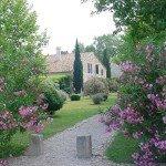 France La Camargue Photo12