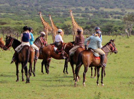 Gordie's Masai Mara | Horse Riding Holidays Kenya