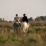 Horse Riding Holidays - La Camargue France - Riding