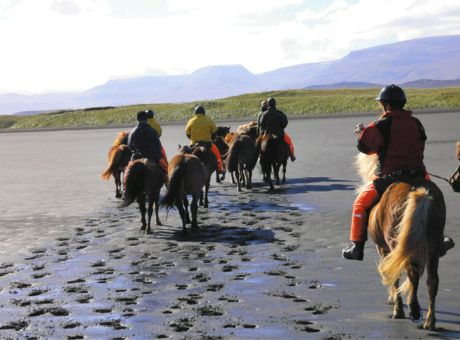 Golden Circle Trail | Horse Riding Holidays Iceland