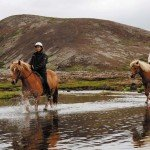 Iceland Golden Circle Trail Photo10